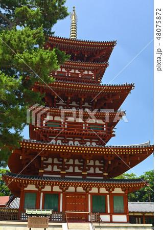 奈良・薬師寺 48075872