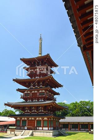 奈良・薬師寺 48075875