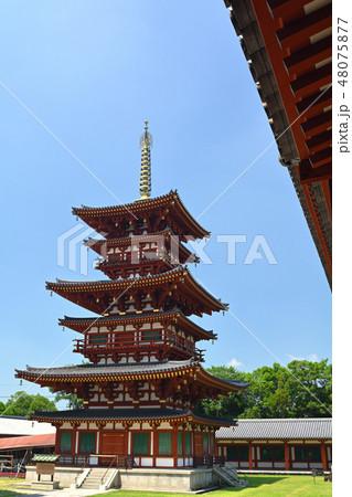 奈良・薬師寺 48075877