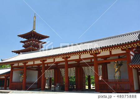 奈良・薬師寺 48075888