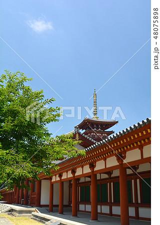 奈良・薬師寺 48075898