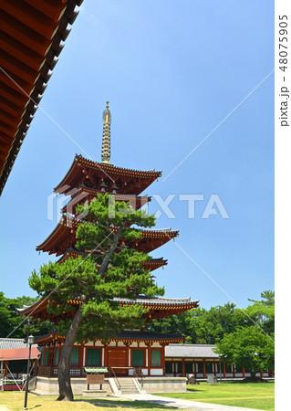 奈良・薬師寺 48075905