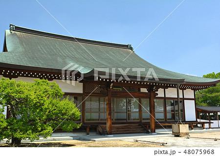 奈良・薬師寺 48075968