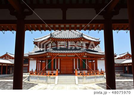 奈良・薬師寺 48075970