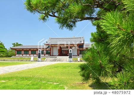 奈良・薬師寺 48075972