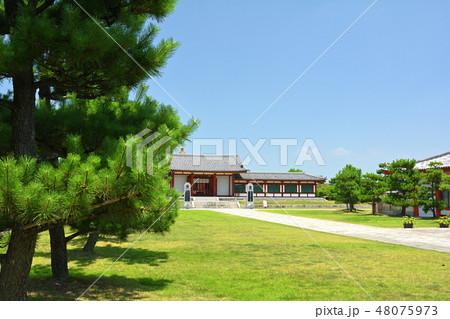 奈良・薬師寺 48075973