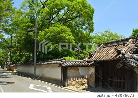 奈良・西ノ京 48076073