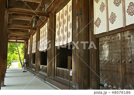 奈良・唐招提寺 48076186
