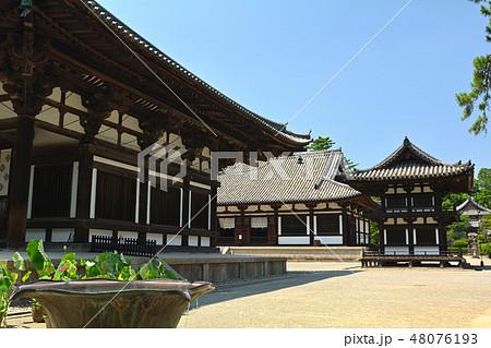 奈良・唐招提寺 48076193