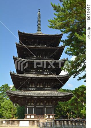 奈良・興福寺 48076447