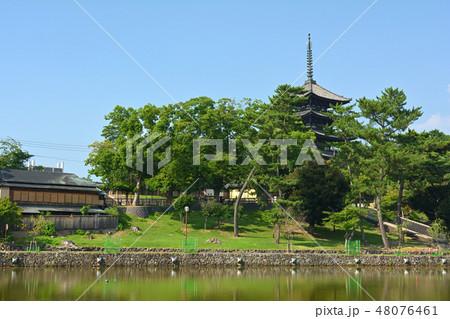 奈良・猿沢池 48076461