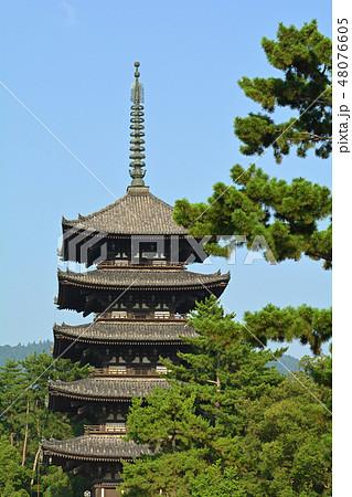 奈良・興福寺 48076605