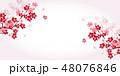 桜 桜の花 春のイラスト 48076846