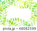 植物 葉 フレームのイラスト 48082599