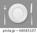 写実的 現実的 お皿のイラスト 48083107