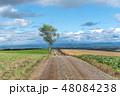 北海道 畑 美瑛の写真 48084238