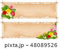 トロピカル 熱帯 フラワーのイラスト 48089526