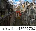 京都伏見稲荷大社 48092708