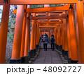 京都伏見稲荷大社 48092727