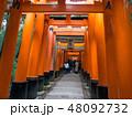 京都伏見稲荷大社 48092732