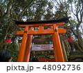 京都伏見稲荷大社 48092736