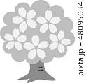 桜木 満開 花 グレー 48095034