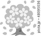桜木 満開 花吹雪 花びら グレー 48095036