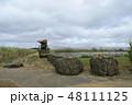サトウキビ 砂糖黍 Saccharum officinarum 農業 収穫 宮古島 沖縄 48111125