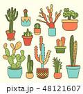 植物 さぼてん サボテンのイラスト 48121607