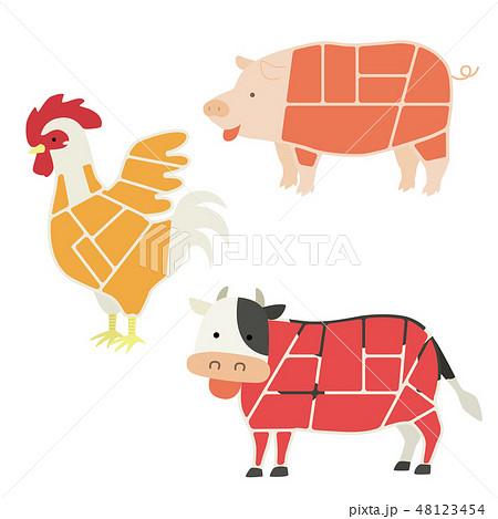 肉になる動物のイラスト(部位説明無し) 48123454