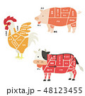 肉になる動物のイラスト(部位説明有り) 48123455