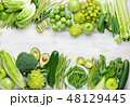 グリーン 緑色 爽やかなの写真 48129445