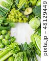 グリーン 緑色 爽やかなの写真 48129449