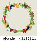 フレーム ベジタブル 野菜のイラスト 48132811