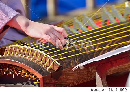 琴の演奏(梅祭り) 48144860