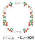 苺 フレーム 果物のイラスト 48144925
