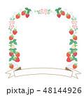 苺 フレーム 果物のイラスト 48144926