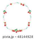 苺 フレーム 果物のイラスト 48144928