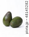 アボカド アボガド 緑の写真 48145282