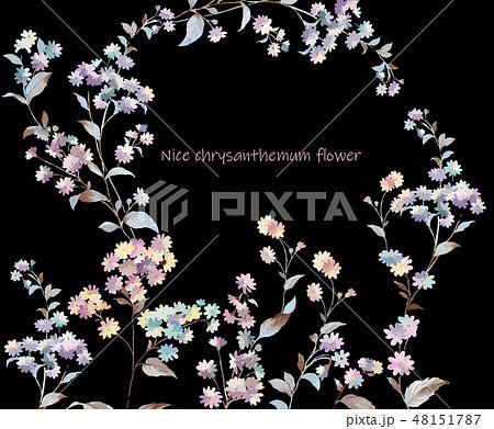 花 フラワー お花 48151787