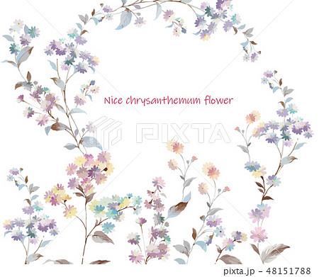花 フラワー お花 48151788