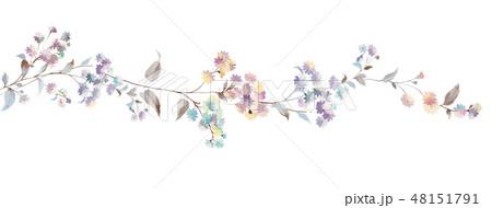 花 フラワー お花 48151791