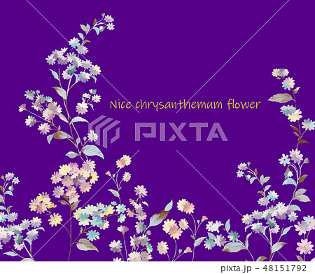 花 フラワー お花 48151792