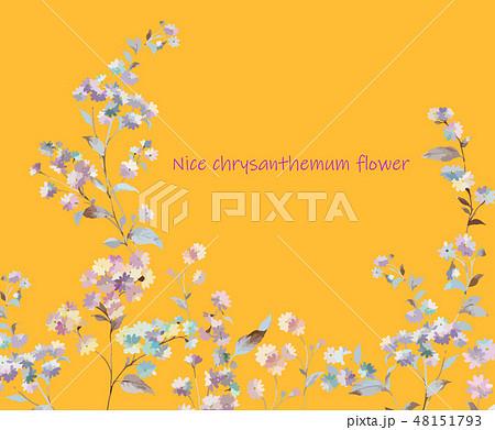 花 フラワー お花 48151793