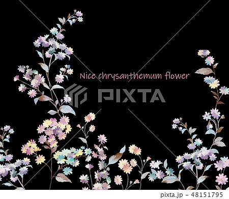 花 フラワー お花 48151795