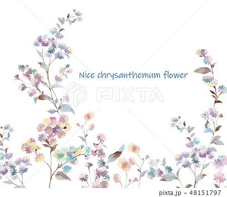 花 フラワー お花 48151797