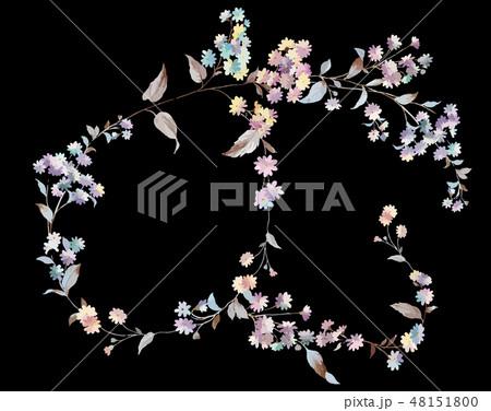 花 フラワー お花 48151800