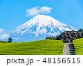 【静岡県】富士山と茶畑 48156515