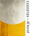 紗綾形 背景素材 模様のイラスト 48160933