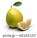 シトラス 柑橘 柑橘系の写真 48162107